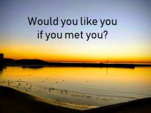 would you like you if you met you?